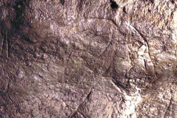 Grottes de Font-de-Gaume et des Combarelles